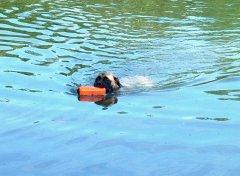 2002.07swimming12.jpg